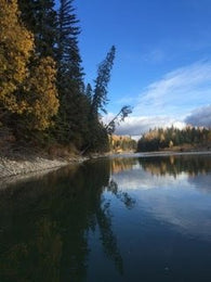 Athabasca River Classic Canoe Trips 2020 - $50 to $90 - Nature AliveTrips