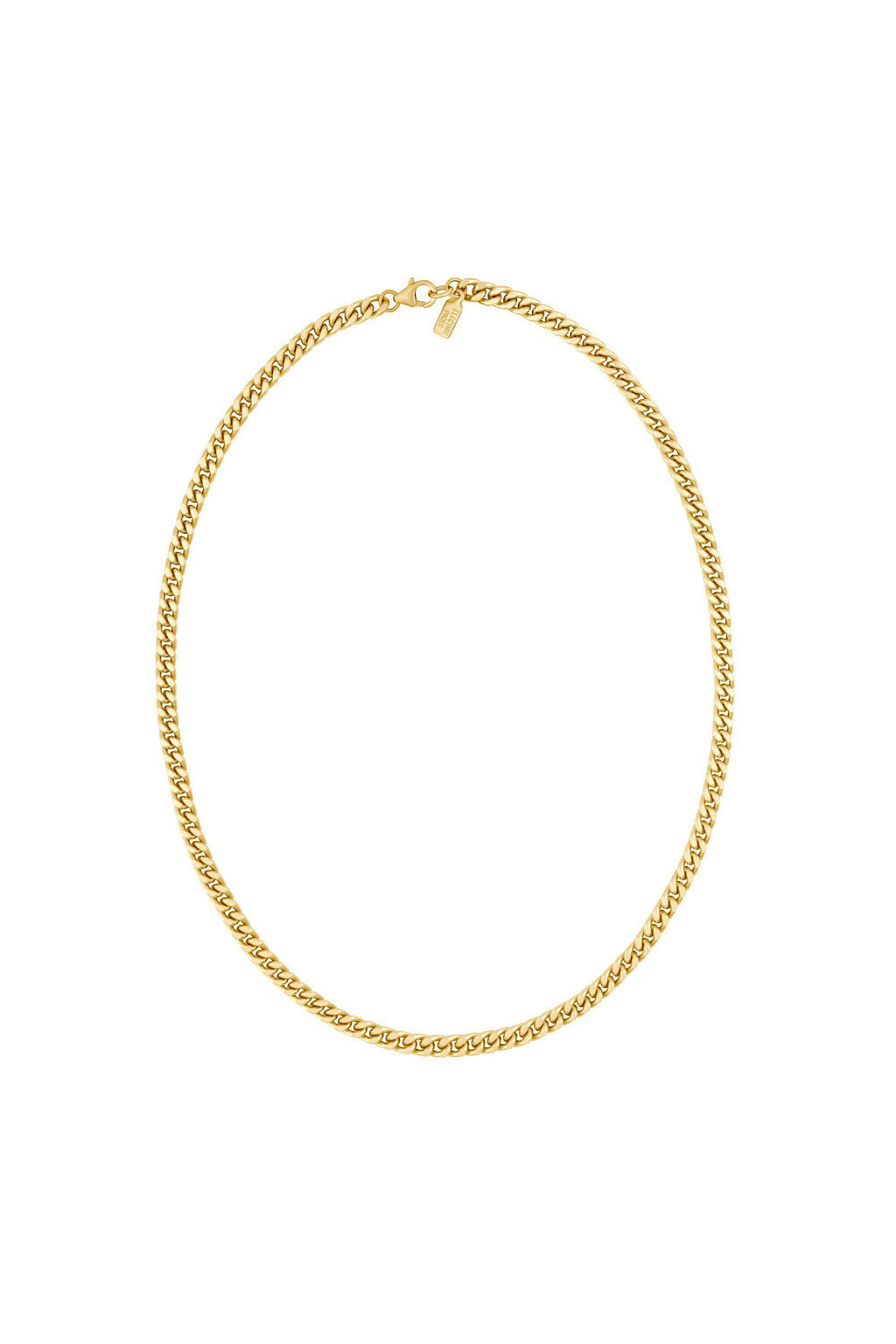 "ELECTRIC PICKS 18"" LEO CHAIN IN GOLD"