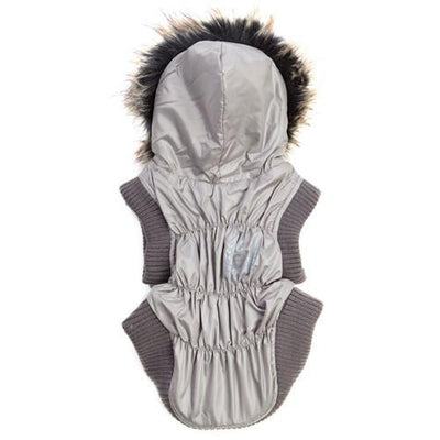 Puppy Angel | Boom Box Dog Jacket - The Gorgeous Pet Boutique UK