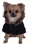 Pet London | Ski Dog Coat - The Gorgeous Pet Boutique UK