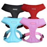 Dogue | Bold Canvas Harness - The Gorgeous Pet Boutique UK