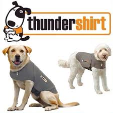 ThunderShirt | Grey - The Gorgeous Pet Boutique UK