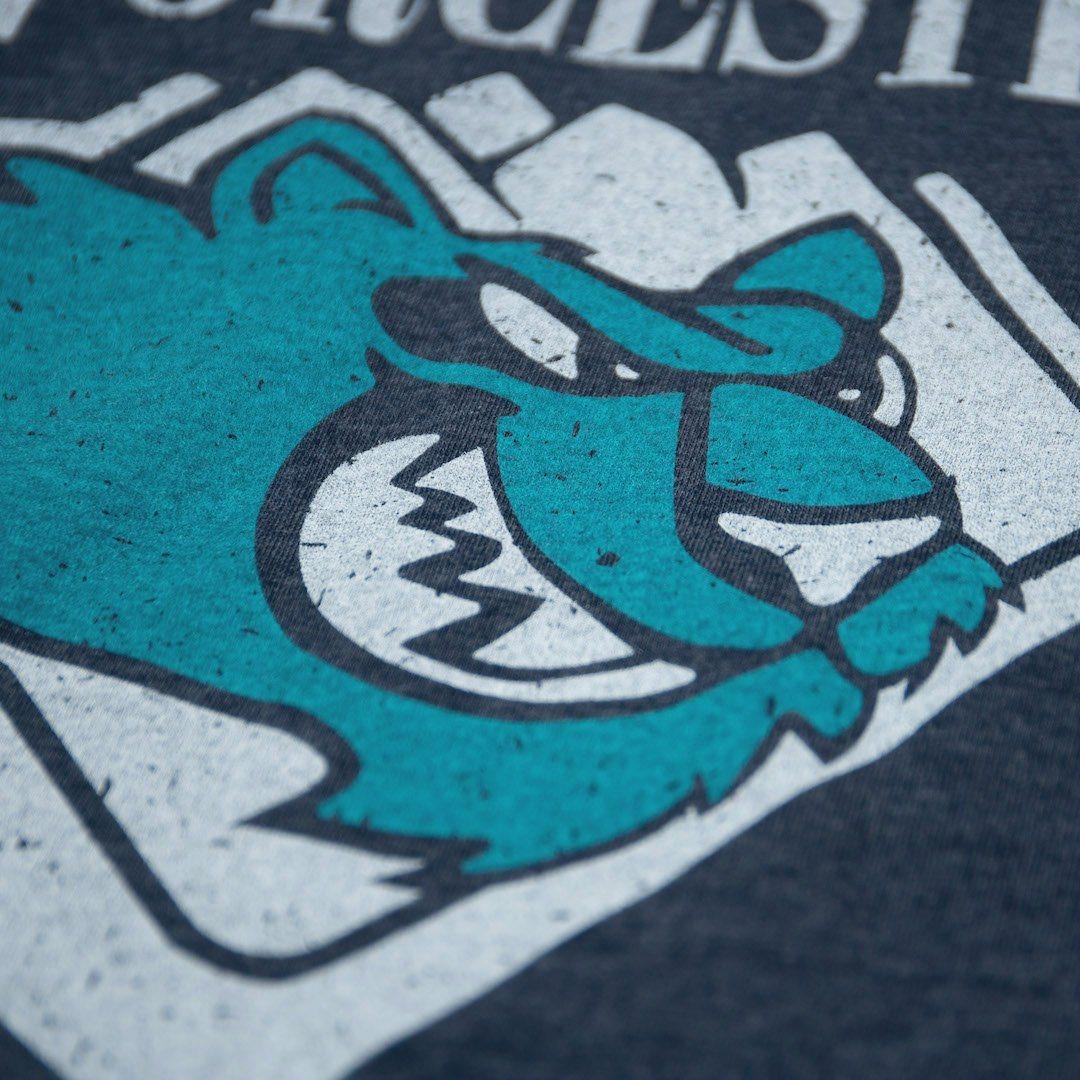 Worcester IceCats Massachusetts T-Shirt Detail Dark Blue