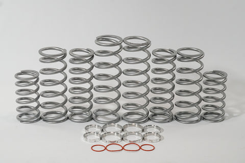 Shock Therapy Dual Rate Spring Kit (DRS)  Polaris XP Turbo S