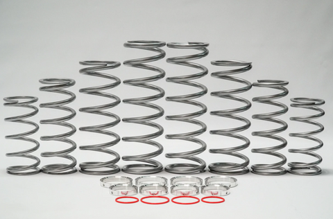 XP Pro (DRS) Dual Rate Spring Kit