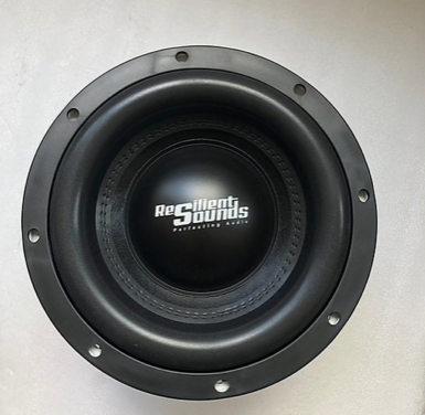 "Gold 10"" 1,000 RMS Woofer"