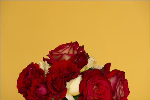 Red Roses on Yellow