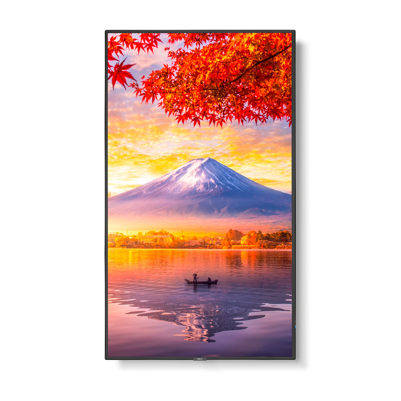 "55"" Wide Color Gamut Ultra High Definition Professional Display"