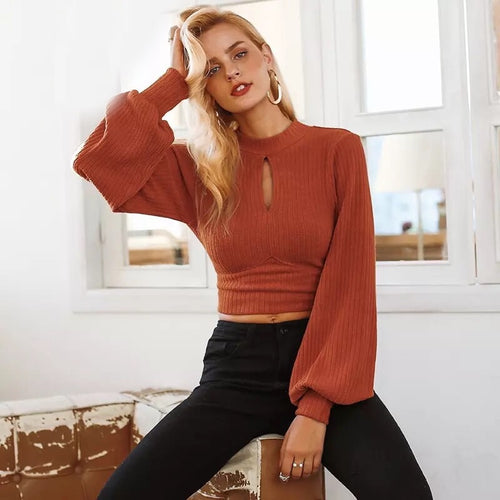 Blake Lantern Sleeve Ribbed Crop Top