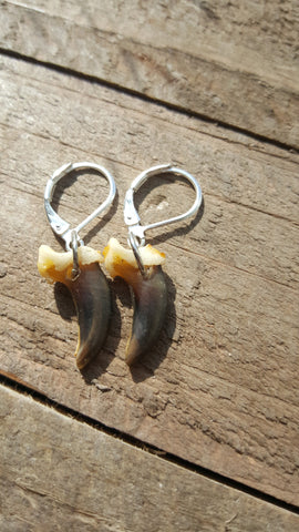 Real Coyote Claw Drop Down Earrings Clip