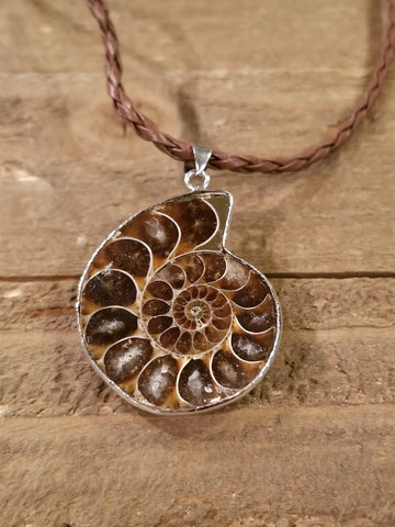 Fossil Ammonite Braided Leather Necklace (N82) - Artisan Bound