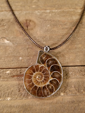 Real Ammonite Fossil Pendant Brown Necklace (N121) - Artisan Bound