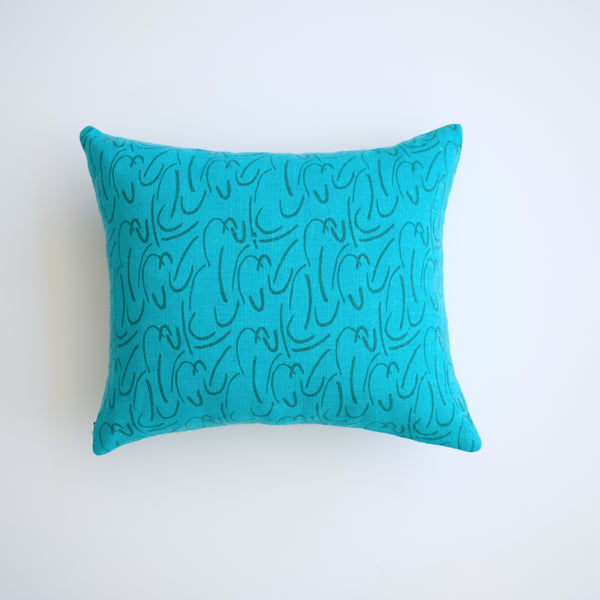 Pillow - Shorthand in Pine over-dyed in Turquoise