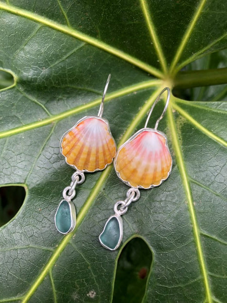 Sea Glass & Sunrise Shell Earring