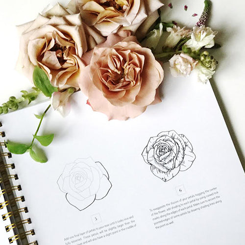 How To Draw Modern Florals