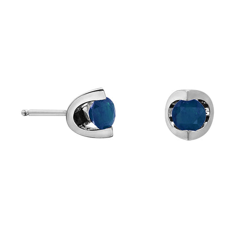 10k White Gold Blue Sapphire Earrings