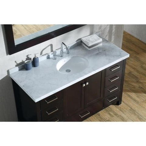 "Ariel Cambridge 55"" Espresso Modern Oval Sink Bathroom Vanity A055S-ESP"