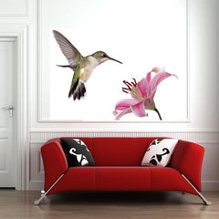 hummingbird wall decal sticker