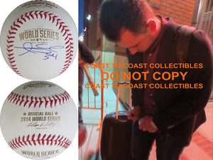 Andrew Susac San Francisco Giants signed 2014 World Series baseball COA proof