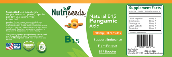 Natural B15 - Pangamic Acid