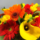 Zoomed in Callas and Gerberas Flowers