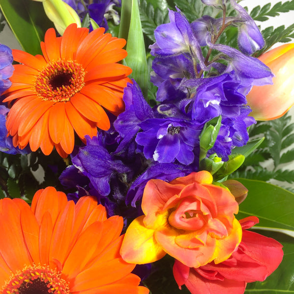Gerbera, Delphinium and other birthday flowers