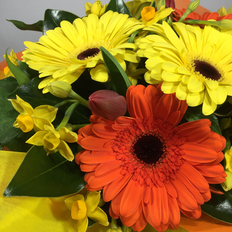 Close up of bright birthday flowers