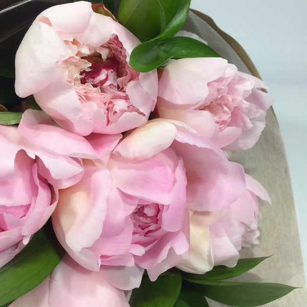 Close up showing peonies for sale