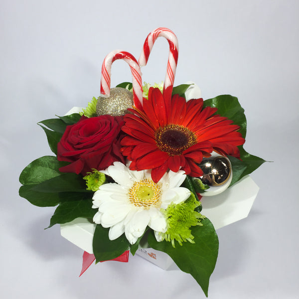 Christmas themed flower box with gerberas, candy canes and baubles