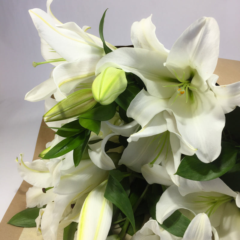 Lily stems arranged for same day delivery