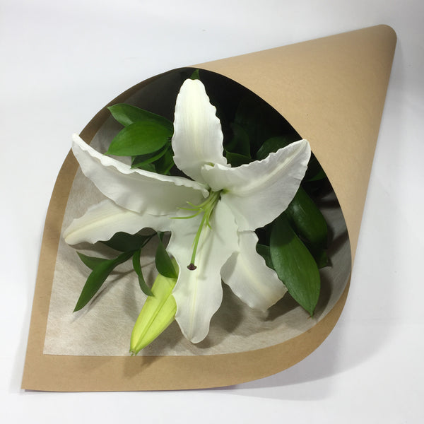Single lily stem presented in cardboard sleeve