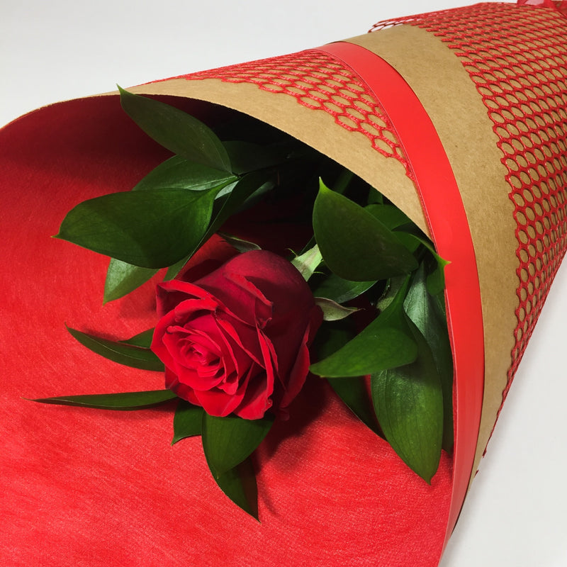 red rose made delivered in Wellington for love