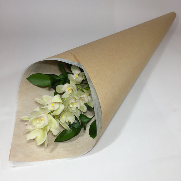 Single mini cymbidium orchid as prepared by Porirua florist
