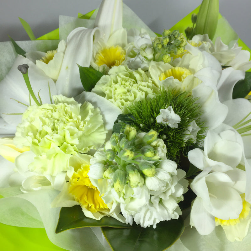 Close up of white flowers in gift bag