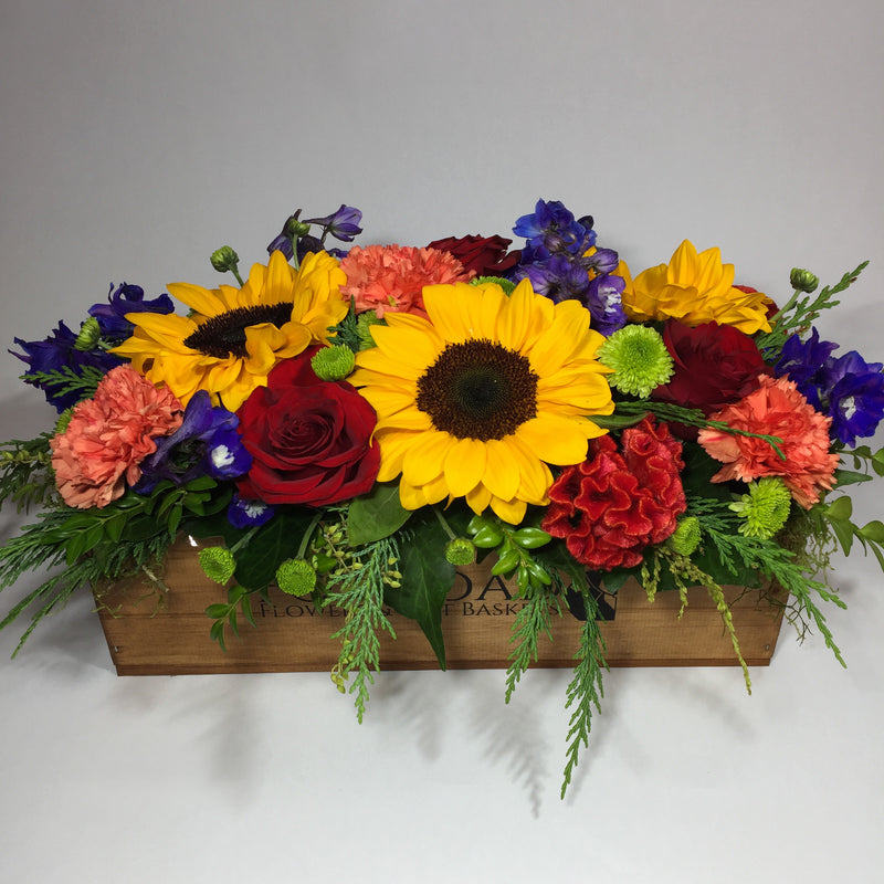 bright sunflowers in Porirua wooden crate