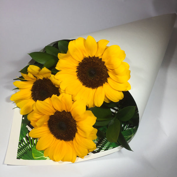 Three bright sunflowers for a Wellington birthday