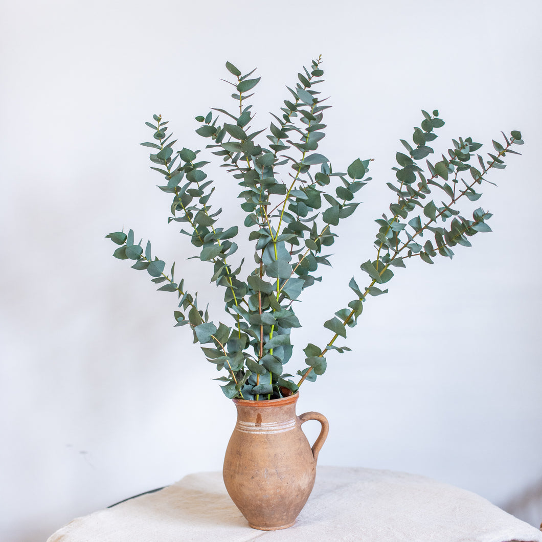The Orsolya Pot