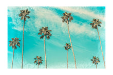 Load image into Gallery viewer, The Palms Photography Print