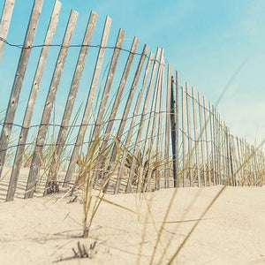 Cape cod beach scenes photography