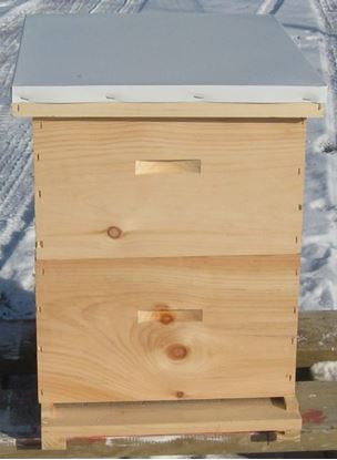 BZ8CO  Complete 8 Frame Hive