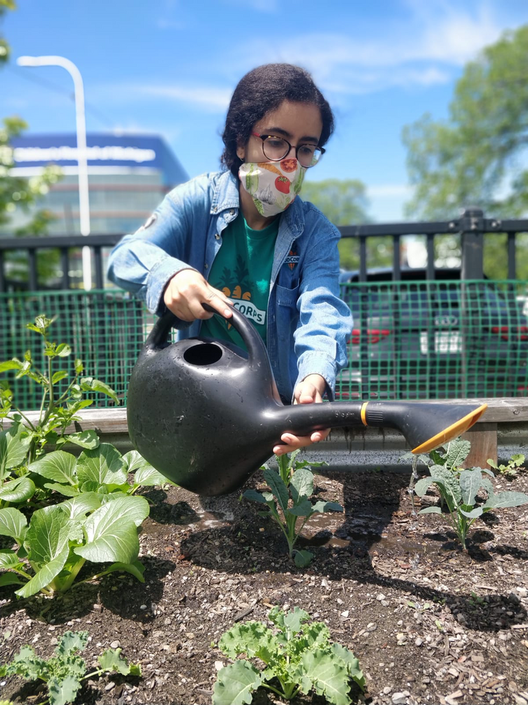 A Detroit Public Schools student waters plants at her FoodCorps program