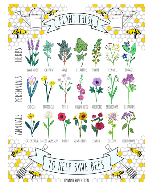 "Plant These to Help Save Bees 16x20"" Poster *or* 11x14"" Print"
