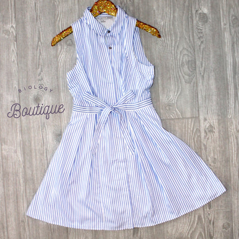 Button Down Sleeveless Stripe Dress - Biology Boutique