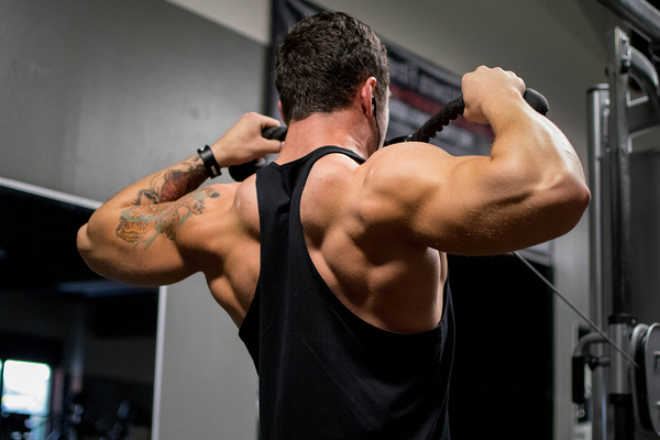 Build Bigger Arms: Top Tips