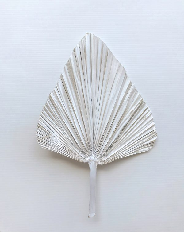 Dried Palm Spear ~ White