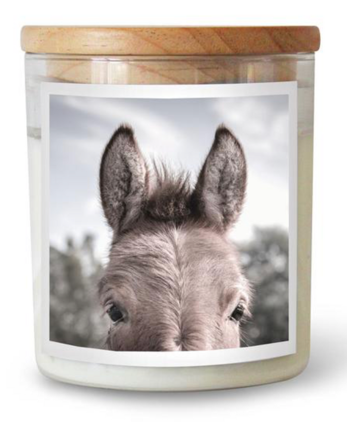 The Donkey Candle