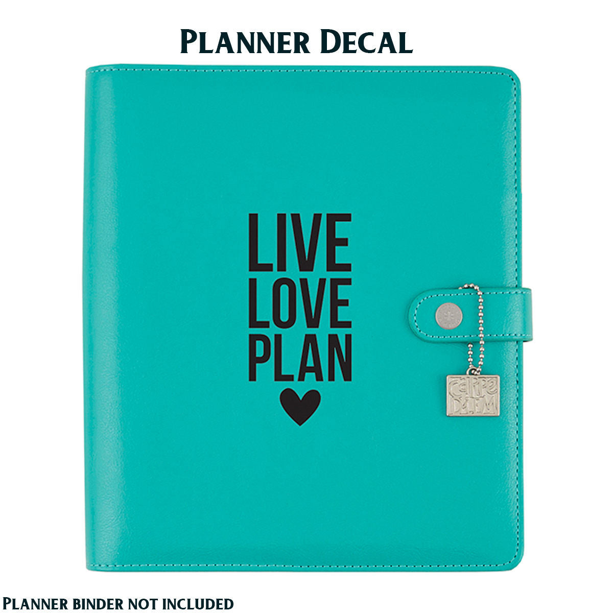 LIVE LOVE PLAN Carpe Diem Vinyl Planner Decal