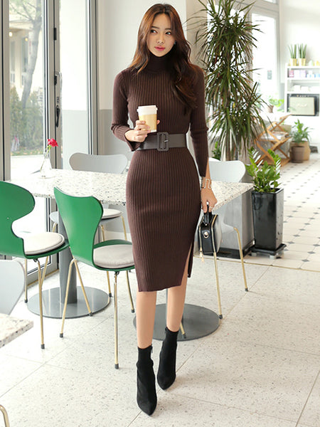 ERICA TURTLE NECK KNIT DRESS