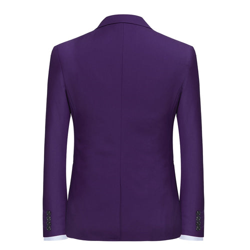 2-Piece Slim Fit Simple Designed Purple Suit