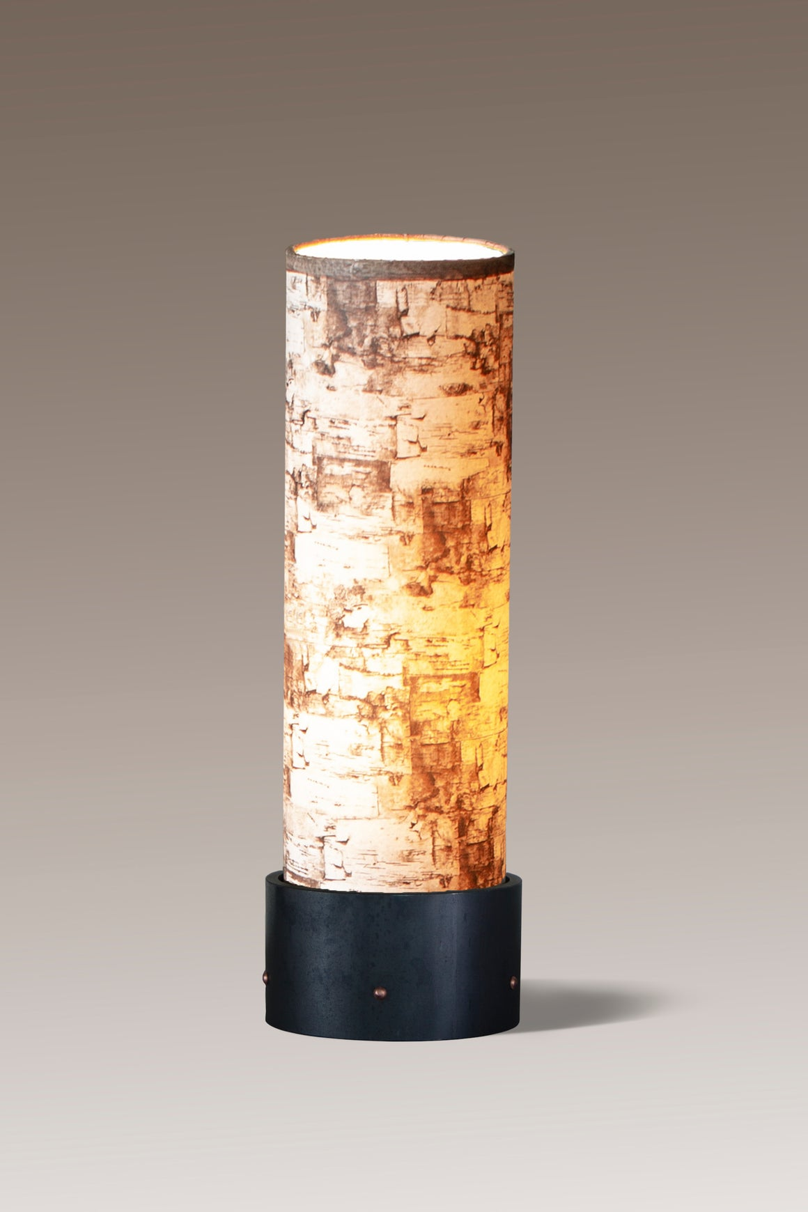 Luminaire Accent Lamp with Birch Bark Shade